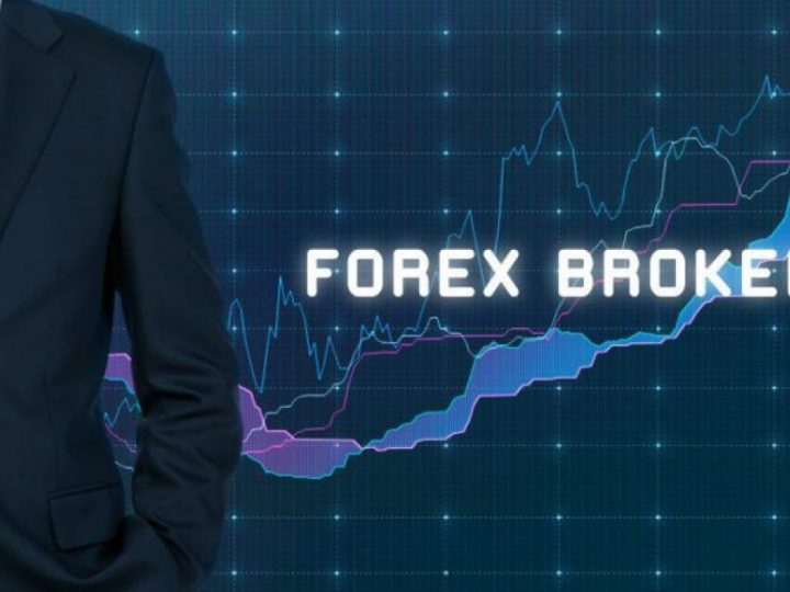 Best Forex Brokers in 2020